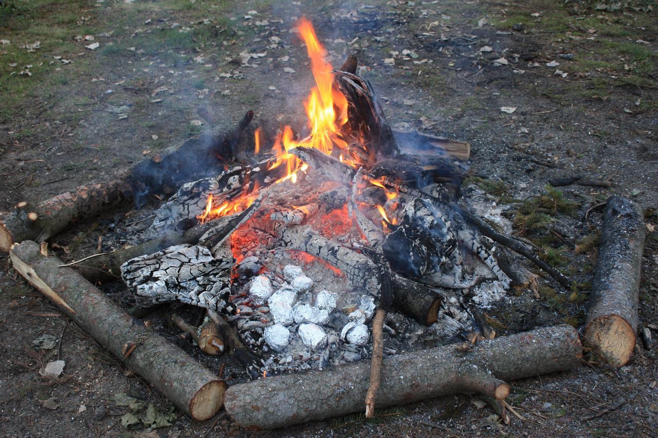 10 Aardappels in het kampvuur (Annemieke)