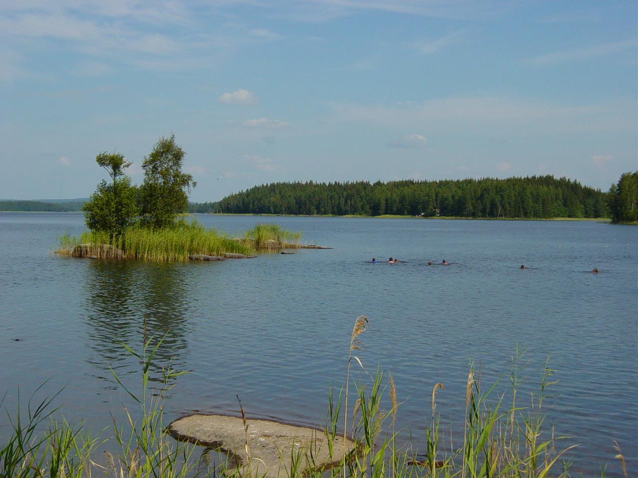 16 Een deel van de groep zwemt heen en terug naar het kleine eilandje (Bas Wetter)