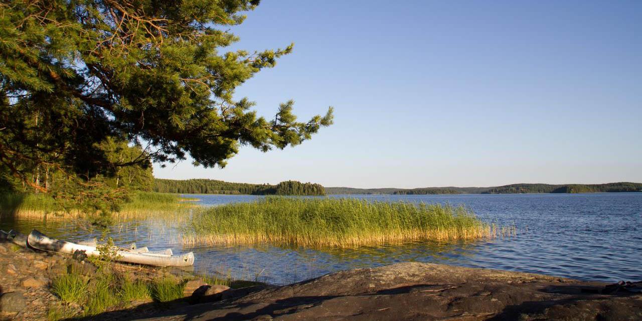 Een week kanoën middenin de natuur is de beste manier om te onthaasten en helemaal zen weer thuis te komen (Bas Wetter)