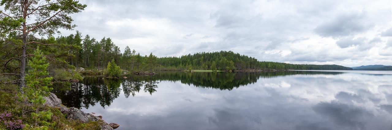 Panorama van een Zweeds meer tijdens een van onze kanoreizen, blijf op de hoogte van onze volgende kanotochten (Bas Wetter)