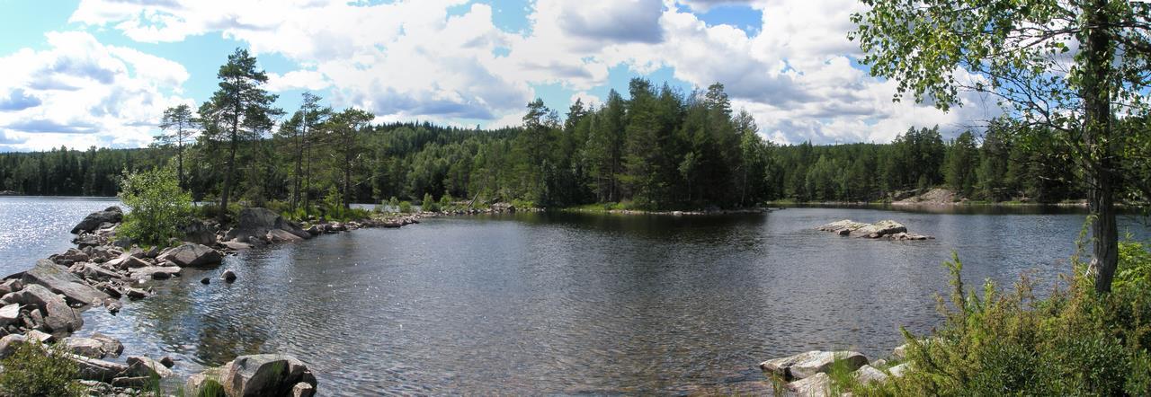Panorama van een kleine baai aan de oever van een meer in Glaskogen bij Arvika (Bas Wetter)