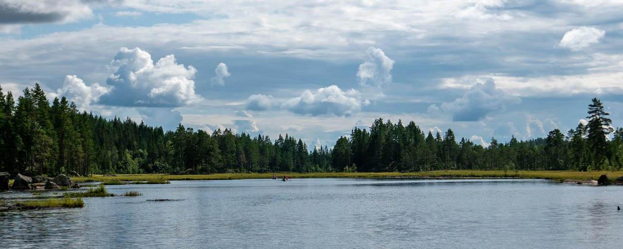 Prachtig Zweeds landschap vanuit de kano (Bas Wetter)